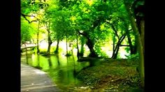 Watch this inspiring video of Krka Waterfalls National Park