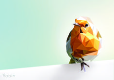 Polygon Robin Art Print by andrewmason Art And Illustration, Art Illustrations, Age Of Ultron, Low Poly, Tony Stark, Graphic Design Posters, Graphic Art, Robin Bird Tattoos, Dragons