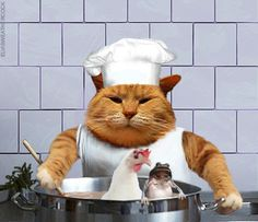 CLICK ON THE WORD GIF.. TO SEE PICTURE MOVE, Feline chef cooking up some frog legs and chicken soup. LOL......