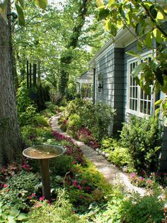 The leafy tree canopy adds a sense of intimacy. The curved stone path is edged by soft shade plants and annuals — proving that you really need only a few feet of space to make a garden. And the copper birdbath placed at the foot of a mature shade tree is an inspired addition.