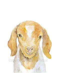 Nubian Goat Watercolor