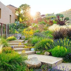 Low water, big impact. less maintenance and lower water bills. Design for garden pictured: Arterra Landscape Architects