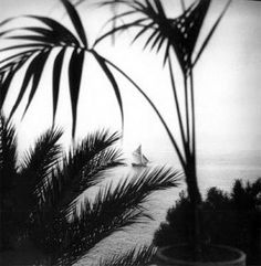 black and white + photography + Cap d'Antibes + Jacques-Henri Lartigue Vintage Photography, Film Photography, Urban Photography, Yvonne Printemps, Cap D'ail, Cap D Antibes, Get Off My Lawn, Voyage New York, London Photographer