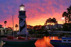 A @SeaWorld Orlando Sunset