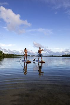Key West Honeymoon- Couple Paddleboard | The Perfect Destination For A Weekend Getaway The Perfect Getaway, Romantic Getaway, Romantic Travel, Romantic Destinations, Amazing Destinations, A Far Off Place, Dolphin Encounters, Honeymoon Spots, Fish Swimming