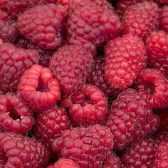 Raspberries: Fiber can lower blood sugar, cut cholesterol, and prevent colon cancer. Here are 20 high-fiber foods and recipes. Best Fiber Foods, High Fiber Foods, Healthy Fruits, Healthy Drinks, Healthy Recipes, Healthy Foods, Healthy Eats, Healthy Nutrition, Healthy Life