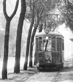 Trieste Tram a Barcola Tramway, Bus, Trieste, Nostalgia, Photos, Houses, Public Transport, Italy, Pictures