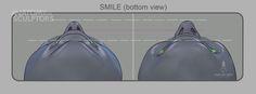 https://www.facebook.com/Anatomy4Sculptors/photos/pcb.793483727417445/793483204084164/?type=1