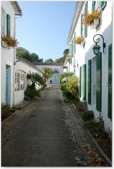 Beautiful il de re france, a fave place for cycling - you are never far from a beach or a baguette!