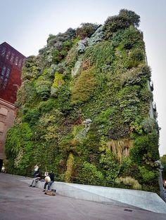 Living Wall by Patrick Blanc.