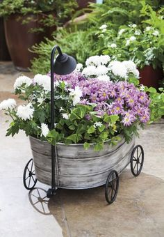 Charming Cottage Garden Tub Planter with Shower Head and Wheels!