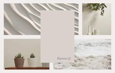 In Plascon Colour Forecast of 2019 we find everything we need to inform us wholly in the present. Plascon Paint Colours, Grey Paint Colors, Paint Companies, Paint Swatches, Color Of The Year, Color Trends, House Colors, Color Inspiration, Interior Decorating