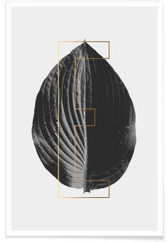 Plants E als Premium Poster von typealive | JUNIQE https://www.juniqe.de/plants-e-premium-poster-portrait-999616.html