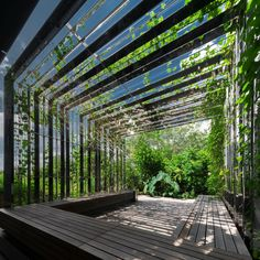 Public spaces Roof Landscape architecture, Roof of public spaces # spaces The Green Architecture, Landscape Architecture, Architecture Design, Urban Landscape, Landscape Design, Garden Design, Pavillion Design, Green Facade, Canopy Design