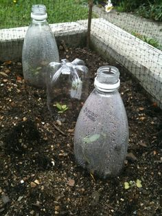 Do you just throw away plastic bottles knowing they're trash? Here is a list of ideas on how to reuse plastic bottles in the garden! Lean To Greenhouse, Homemade Greenhouse, Indoor Greenhouse, Greenhouse Ideas, Cheap Greenhouse, Greenhouse Wedding, Outdoor Landscaping, Outdoor Gardens, Outdoor Life