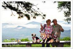 Phu Ruea National Park, Happy family trip. #LoieThailand #Thailand  ++ English language support >> http://ThailandHolidays7.com