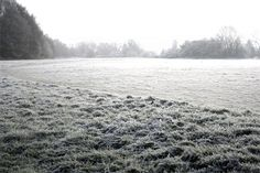 Cholesbury cricket pitch in the frost Pitch, Cricket, Frost, English, Outdoor, Outdoors, Cricket Sport, English Language, Outdoor Games