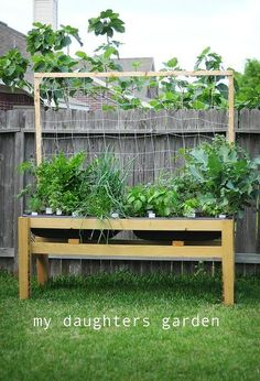 the benefits of raised urban gardening, gardening, homesteading, urban living, 12 Great for wheelchairs and walkers