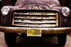 Tiger Country - Purple and Old by Scott Pellegrin