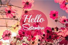 AGNES' NATUTERAPIAS: Previsões Numerológicas para o Mês de Setembro e s...