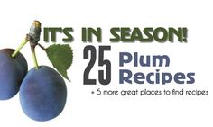 It's in Season: 25 plum recipes salads, soups, meals, baked goods, to sweets (Summer Baking Goods) Plum Recipes, Fruit Recipes, Sweet Recipes, Salad Recipes, Cooking Recipes, Homemade Desserts, Delicious Desserts, Yummy Food, Prune Plum