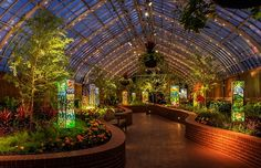 Phipps in pittsburgh