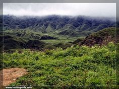 The Dzukou Valley is a valley located at the border of the Indian states of Nagaland and Manipur . It can be reached in five hours of trek from Mt. Isii of Senapati district of Manipur. The new five hour trek route was opened by MMTA (Manipur Mountaineering and Trekking Association). This valley is well known for its natural beauty, seasonal flowers and the overall flora and fauna.