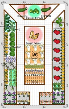 Garden Plan - 2014: Celeste's Veggie Garden, lovely shape and planting design...