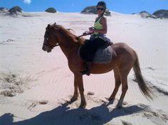 Horse riding on the beach Bay Lodge, St Francis, Horse Riding, South Africa, Trip Advisor, Beaches, Horses, Garden, Animals