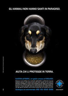 """On air la nuova campagna ENPA """"Gli animali non hanno santi in paradiso"""" -"""