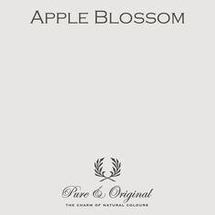 Apple Blossom - Pure & Original - paint