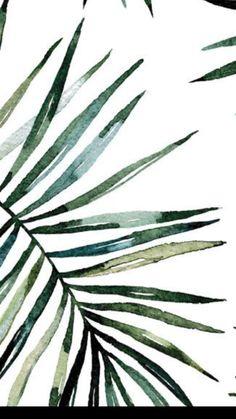 Palm Tree Background, Juices, Palm Trees, Magnolia, Planting Flowers, Plant Leaves, Aesthetics, China, Illustrations