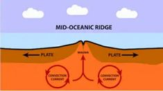 what is Mid Oceanic Ridge? How does it form? What are the forces responsible for its formation? What Is The Force, Seafloor Spreading, Hydrogen Sulfide, Rift Valley, Lava Flow, Magnetic Field, Earth Science, No Response