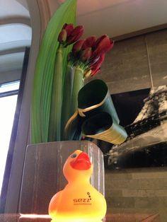 Sezz Duck At Beach Hotel Saint Tropez gtgt Saintropcom The Site