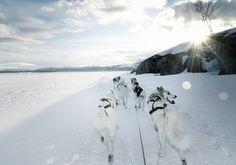 Uit de reportage op jacht naar het Noorderlicht - Nomad & Villager
