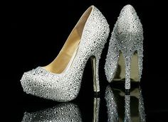 Benjamin Adams Rio Silver Lace / Nude Silk Evening Shoes