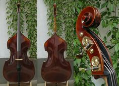 The Björn Stoll Bosa model double bass from Kontrabass-Atelier Double Bass, Guitars, Building, Model, Baby, Violin, Music Instruments, Musicals, Atelier