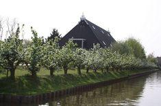 tuinontwerp-landelijke-tuin | TuinTuin Hampshire, House Styles, World, Outdoor, Home Decor, Live, Blog, Nice Asses, Outdoors