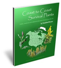 Survival medicine for survival preparedness is about planning how to handle medical or health emergencies...