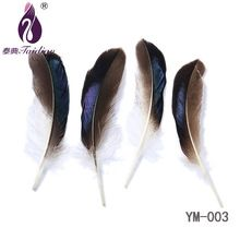 Natural real DUCK plume bulk feather sale for jewelry craft ,hat,100pcs 8-15cm Duck feather(China (Mainland))