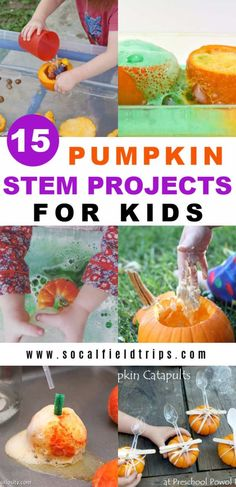 Check out these 15 Easy Pumpkin STEM Projects For Kids! From making orange oobleck to exploding pumpkin volcanos, there's a wide variety of projects to do. Halloween Science, Halloween Activities For Kids, Kids Learning Activities, Autumn Activities, Stem Activities, Halloween Ideas, Science Experiments Kids, Science For Kids, Preschool Science