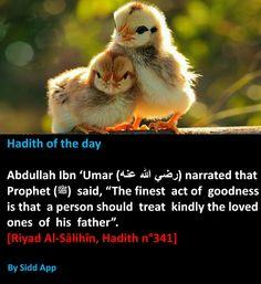 Prophet Muhammad Quotes, Hadith Quotes, Muslim Quotes, Religious Quotes, Quran Quotes, Allah Quotes, Hindi Quotes, Famous Quotes, Wisdom Quotes