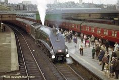 The last run of A4 No 60019 'Bittern' at  Aberdeen in 1966. Built at Doncaster Works and delivered on 18th Dec 1937. Withdrawn on 5th Sept 1966. Now preserved at the Mid Hants Railway.