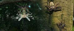 Excursion inmersiva sobre insectos de Raiz Media para Google Expeditions.
