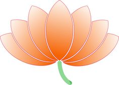 Flower Lotus Nature Blossom transparent image