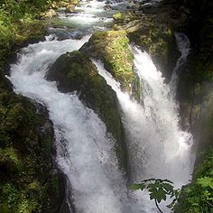 26 natural falls Washington's Olympic Peninsula Waterfall Trail. Sol Duc Falls (pic), near Port Angeles. A 0.8-mile trail leads to a misty footbridge, peer down at the falls crashing to mossy rocks. Vincent Creek Falls, a 125-foot chute visible from High Steel Bridge near Hoodsport.