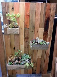 Plant shelves with re-used wood from pallets