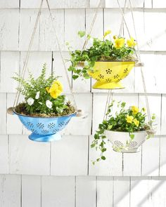 10 Incredibly Creative DIY Garden Planters Hang spring flowers in brightly colored colanders for an unexpected and truly unique way to update your porch. The post 10 Incredibly Creative DIY Garden Planters appeared first on Garden Easy. Diy Planter Box, Diy Planters, Garden Planters, Planter Ideas, Patio Plants, Plants Indoor, Hanging Planters Outdoor, Balcony Garden, Flowers In Planters
