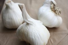 Eating #garlic is one good way to improve your immune system naturally