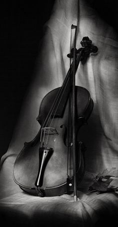 """cafemarocchino: """" I LOVE IT when I come across photos like this! Violin Instrument, Violin Art, Violin Music, Art Music, Sound Of Music, Music Love, Violin Photography, Still Life Photos, Music Wallpaper"""
